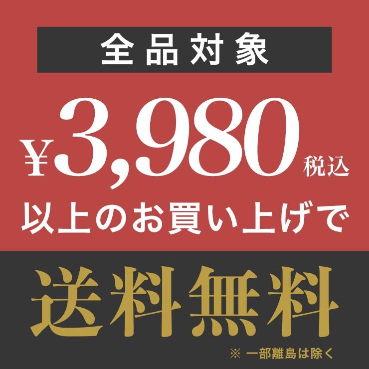 送料無料 3980円
