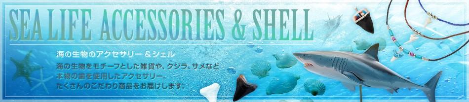 海の生物のアクセサリー&シェル