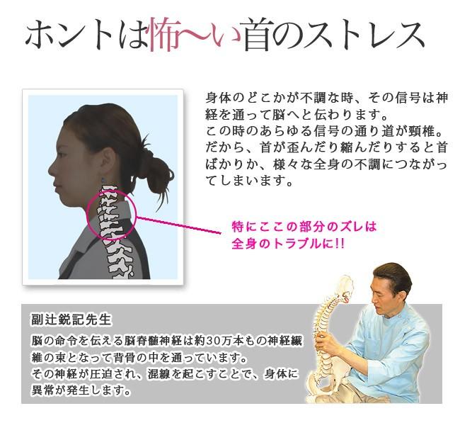 ホントは怖〜い首のストレス 身体のどこかが不調な時、その信号は神経を通って脳へと伝わります。この時のあらゆる信号の通り道が頸椎。だから、首が歪んだり縮んだりすると首ばかりか、様々な全身の不調につながってしまいます。 特にここの部分のズレは全身のトラブルに!! 副辻鋭記先生 脳の命令を伝える脳脊髄神経は約30万本もの神経繊維の束となって背骨の中を通っています。その神経が圧迫され、混線を起こすことで、身体に異常が発生します。