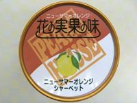 ニューサマーオレンジシャーベット