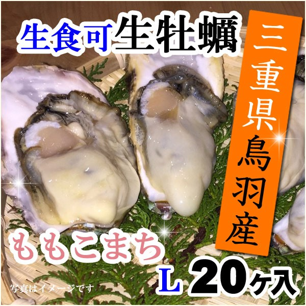 国産牡蠣の生食可