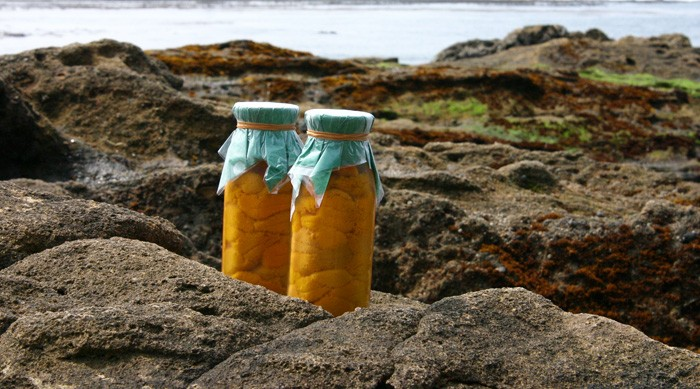 三陸の海とウニ瓶詰