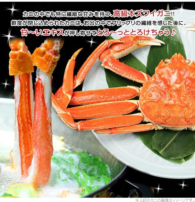 カニの中でも特に繊細な甘みを持つ高級本ズワイガニ!鮮度が閉じ込められた蟹はプリプリの繊維を感じた後に、甘いエキスが押し寄せてとろける美味しさです。