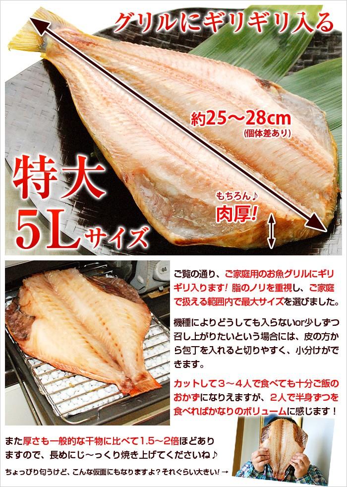 ご覧の通り、ご家庭用のお魚グリルにギリギリ入ります!脂のノリを重視し、ご家庭で扱える範囲内で最大サイズを選びました。機種によりどうしても入らないor少しずつ召し上がりたいという場合には、皮の方から包丁を入れると切りやすく、小分けができます。カットして3〜4人で食べても十分ご飯のおかずになりえますが、2人で半身ずつを食べればかなりのボリュームに感じます!また厚さも一般的な干物に比べて1.5〜2倍ほどありますので、長めにじ〜っくり焼き上げてくださいね♪