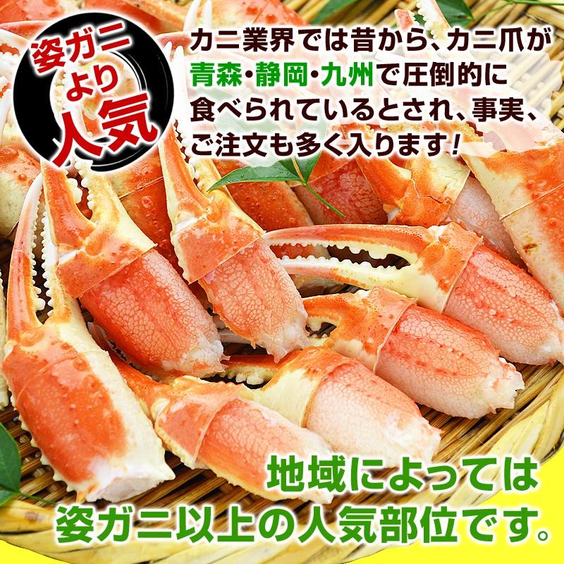 カニ業界では昔から、カニ爪が青森・静岡・九州で圧倒的に食べられているとされ、事実、ご注文も多く入ります!地域によっては姿ガニ以上の人気部位です。