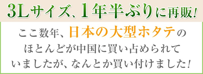 3Lサイズのホタテを1年ぶりに再販!ここ数年、日本の大型ホタテのほとんどが中国に買い占められていましたが、なんとか買い付けました!