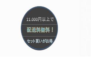 10,100円以上で送料無料
