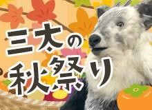 三太の秋祭り
