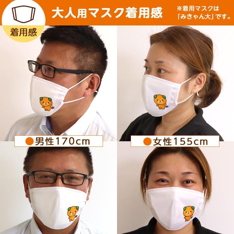 大人用マスク着用感