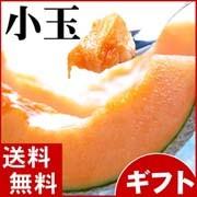 北海道富良野メロン
