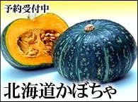 北海道かぼちゃ
