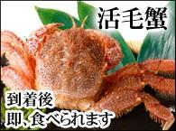 北海道産活毛ガニ