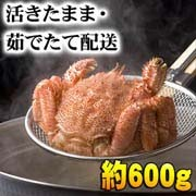 活毛蟹 600g大サイズ