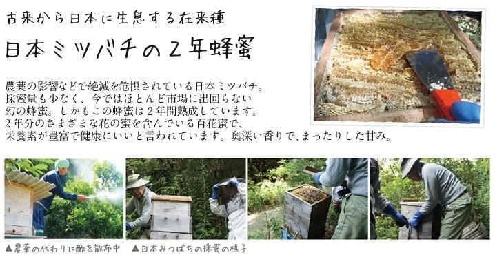 日本ミツバチのはちみつ
