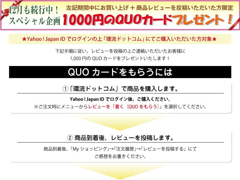 QUOカードプレゼント説明
