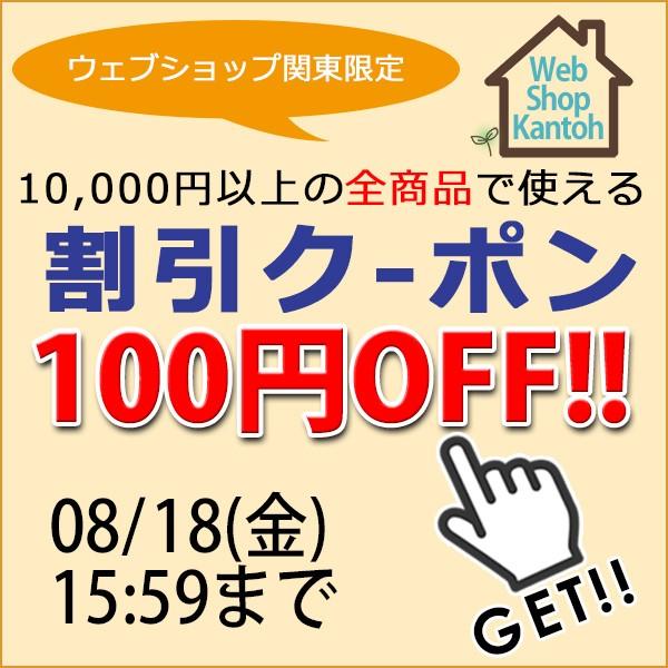 ウェブショップ関東の10,000円以上の全商品で使える100円OFFクーポン
