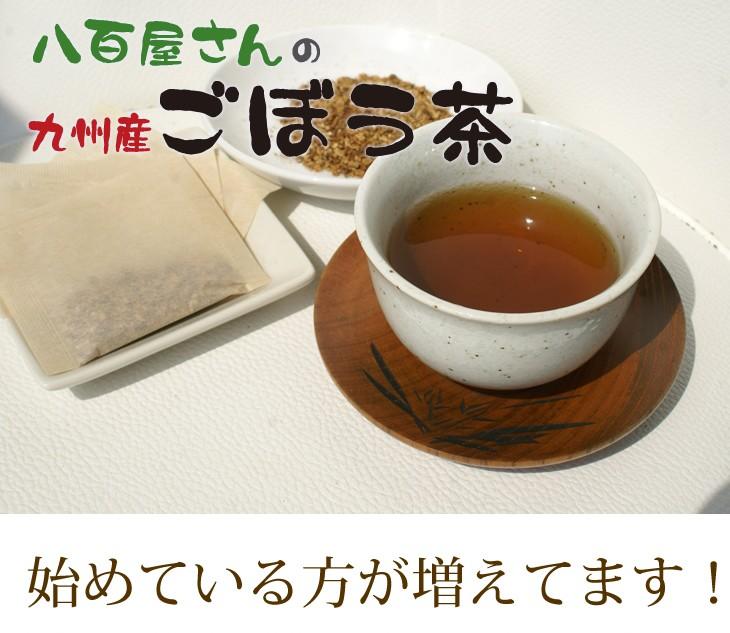 【レビューを書いて送料無料】さがん農園 八百屋さんの九州産ごぼう茶 ティーパック(2.5g×30包)健康茶 美容 ダイエット ごぼう茶 国産 送料無料
