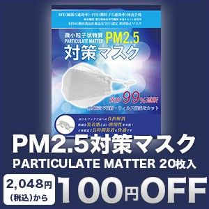 PM2.5対策マスク PARTICULATE MATTER X20入り  100円Offクーポン