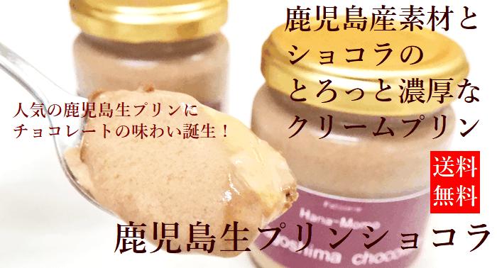 生プリンショコラ