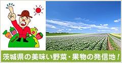 茨城県の美味い野菜・果物の発信地!