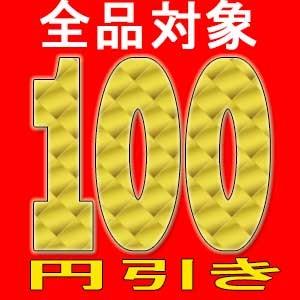 全品100円引きクーポン