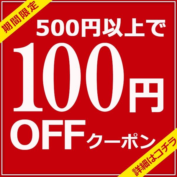 全商品対象!500円以上購入で100円OFFクーポンプレゼント☆