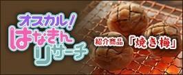 ■「オスカル!はなきんリサーチ」紹介商品■