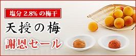 天授の梅(はちみつ入り・しそ漬)新発売!