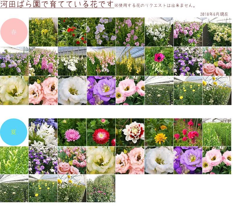 河田ばら園で育てている花です01