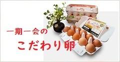 一期一会のこだわり卵