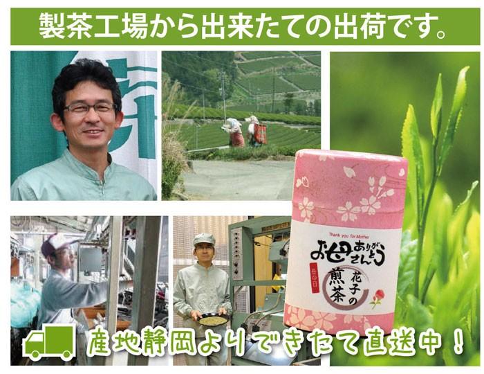 製茶工場から出来たての出荷です