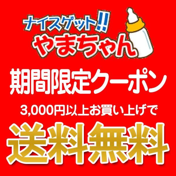 ナイスゲットやまちゃん【送料無料】クーポン