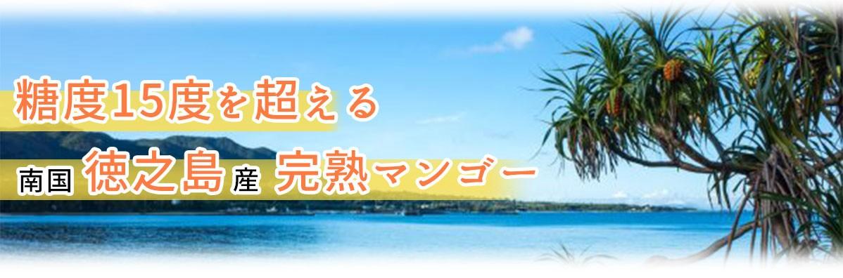 徳之島の花徳地区で育てたマンゴー農園のショップです。