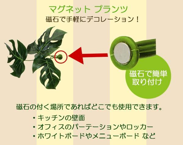 磁石で付ける新発想のフェイクグリーン
