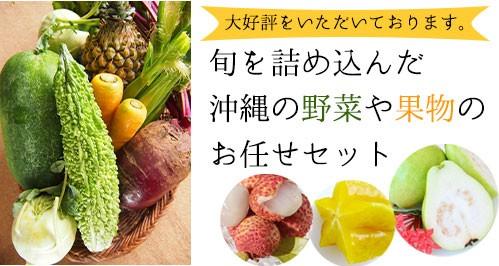 沖縄野菜果物セット
