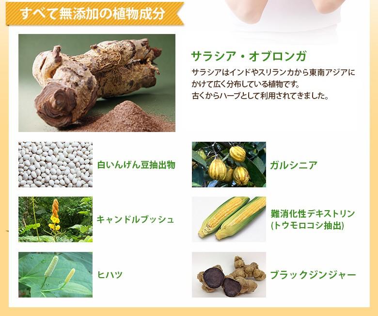 すべて無添加の植物成分サラシア・オブロンガサラシアはインドやスリランカから東南アジアにかけて広く分布している植物です。アーユルヴェーダでは古くからハーブとして利用されてきました。白いんげん豆抽出物/ガルシニア/キャンドルブッシュ/難消化性デキストリン(トウモロコシ抽出)/ヒハツ/ブラックジンジャー