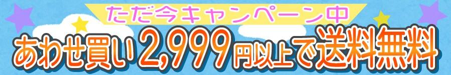 あわせ買い2999円
