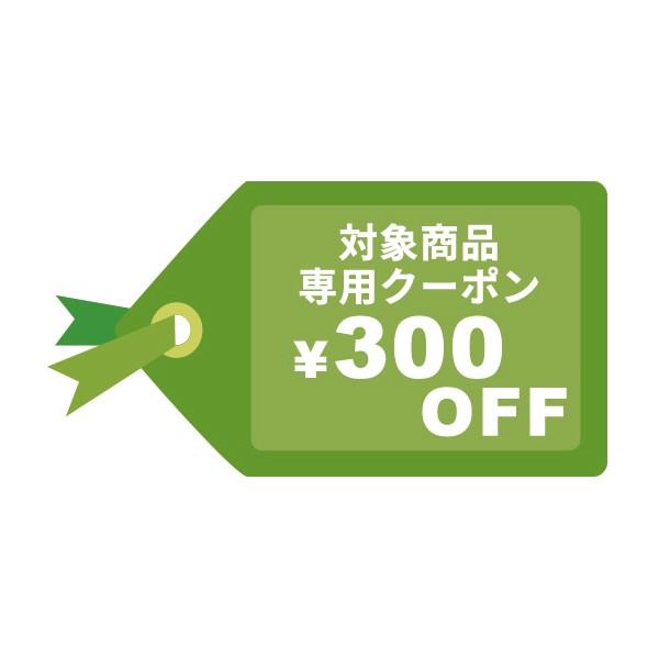 ★期間限定 300円OFF COUPON★