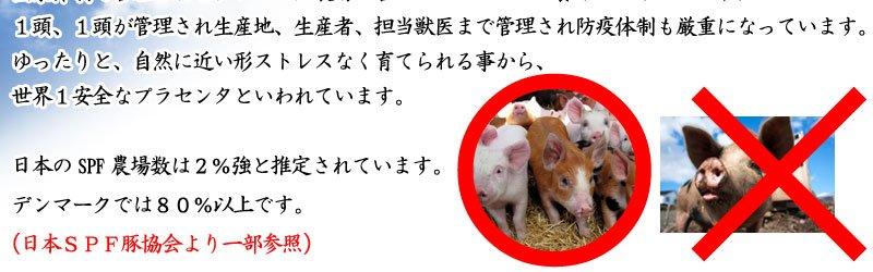 SPF豚プラセンタサプリメント