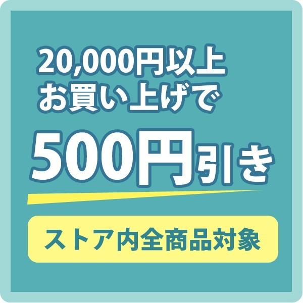 20,000円以上お買い上げで500円引きクーポン