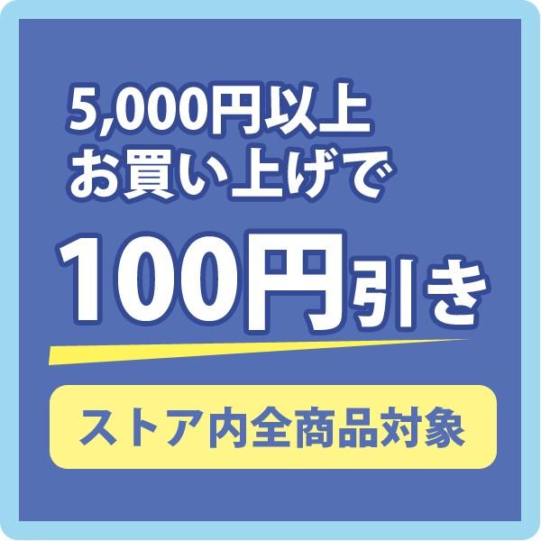 5,000円以上お買い上げで100円引きクーポン
