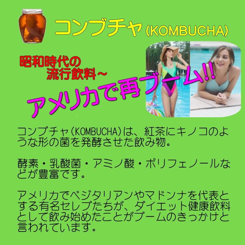 モリンガ コンブチャ 爽やかミックス青汁05