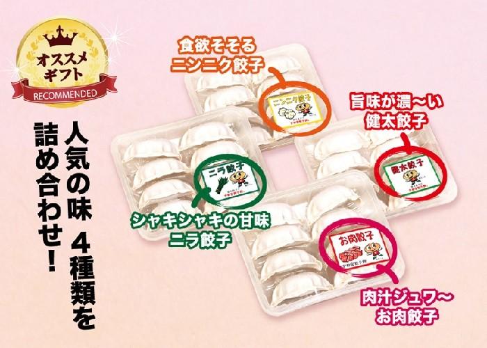 4色餃子セット