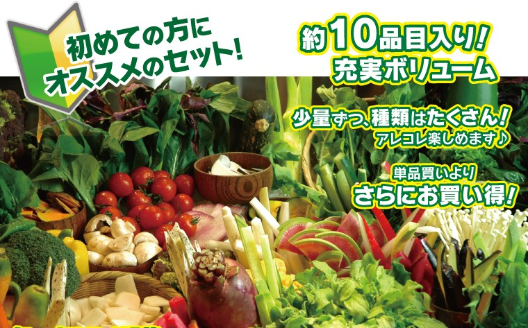 農家の台所お試し野菜セット