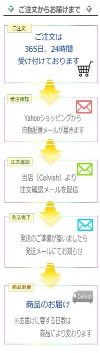 Celvish注文までの流れ