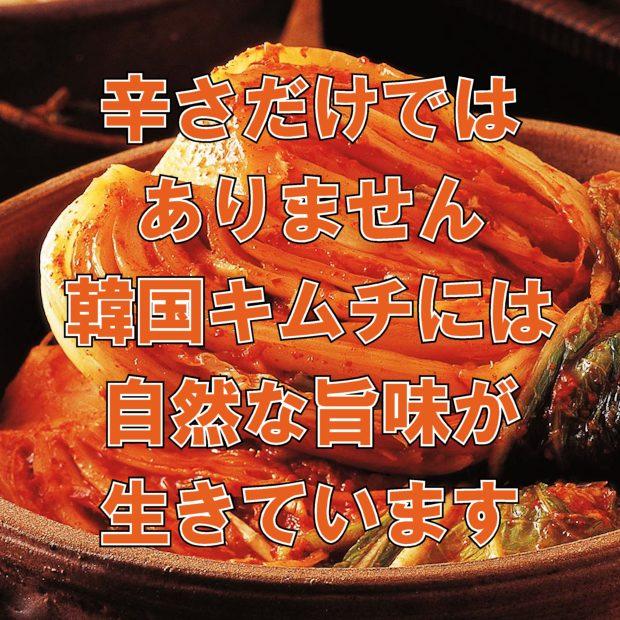 韓国キムチは自然な旨味がいっぱい