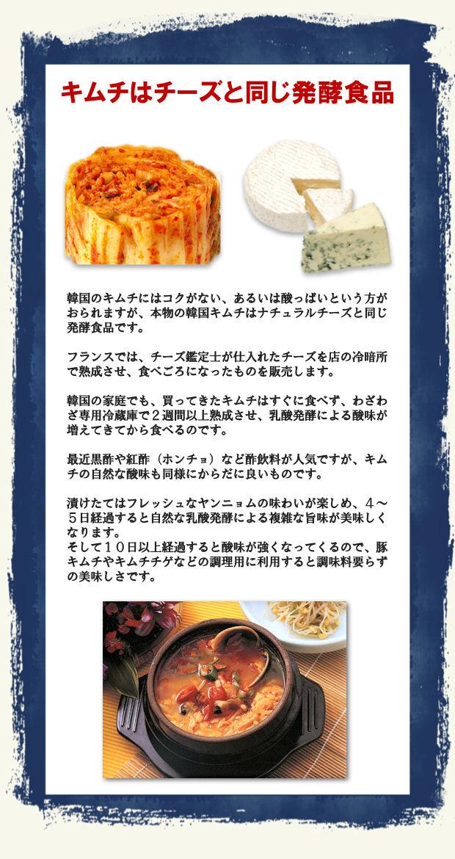 キムチはチーズと同じ発酵食品