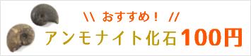 108円アンモナイト化石