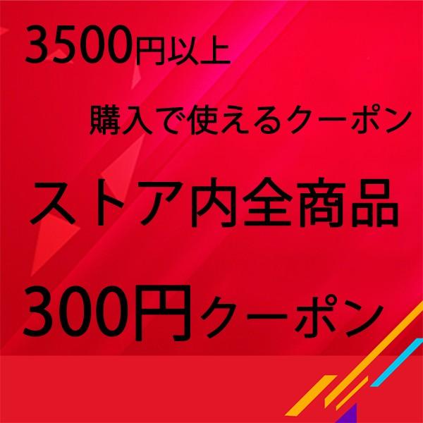 九月 300円クーポン
