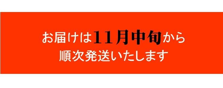 商品説明10